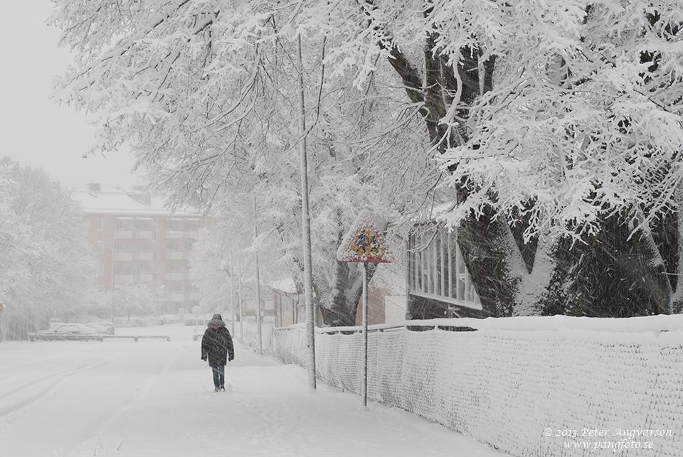 Studievägen, Uddevalla