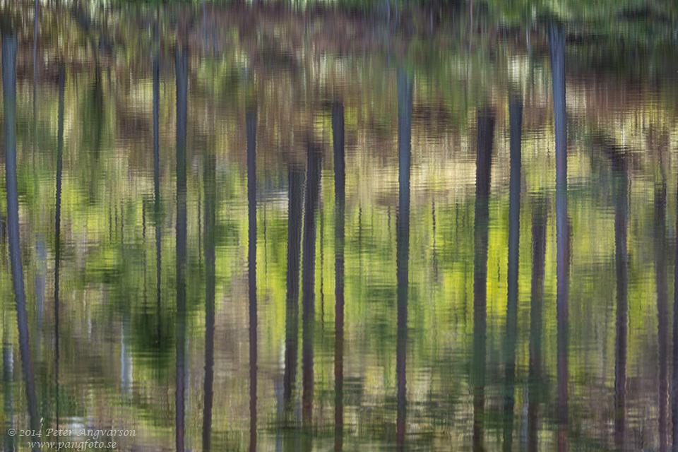 spegelbild_trad_pangfoto_se_U7A9714