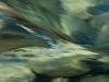 abisko_vatten_pangfoto_se_pa19809