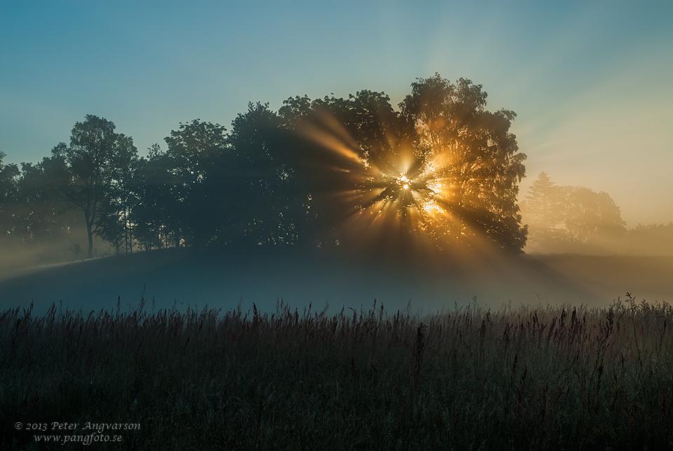 solstralar_pangfoto_se_PA16408