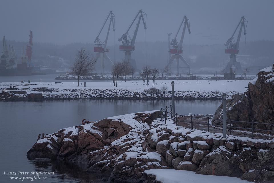 skeppsviken_pangfoto_se_U7A3318
