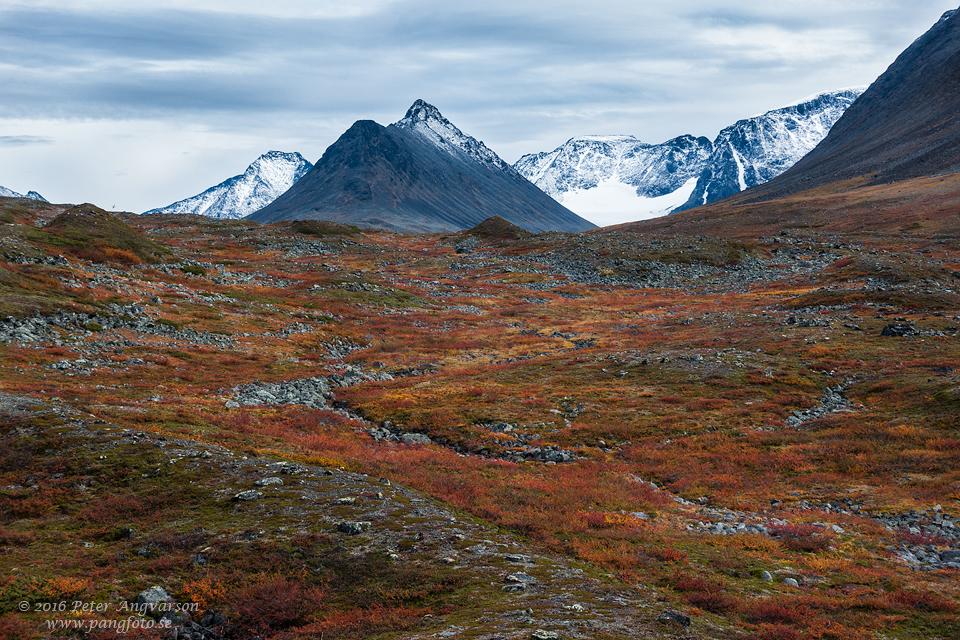 Drakryggen kungsleden nordkalottenleden fjällvandring pangfoto Peter Angvarson