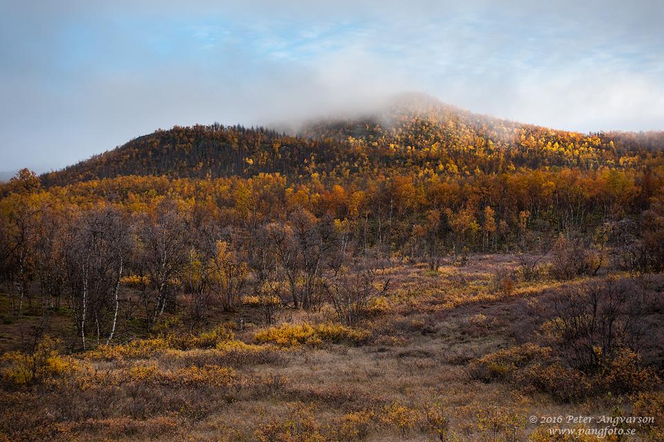 Nikkaluokta Alemus Kattar nordkalottenleden fjällvandring pangfoto Peter Angvarson