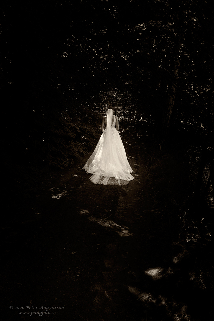 Brud i skog. Bride in a forest.