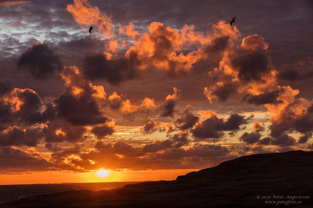 Solnedgång och moln. Sunset and clouds. Bohuslän.